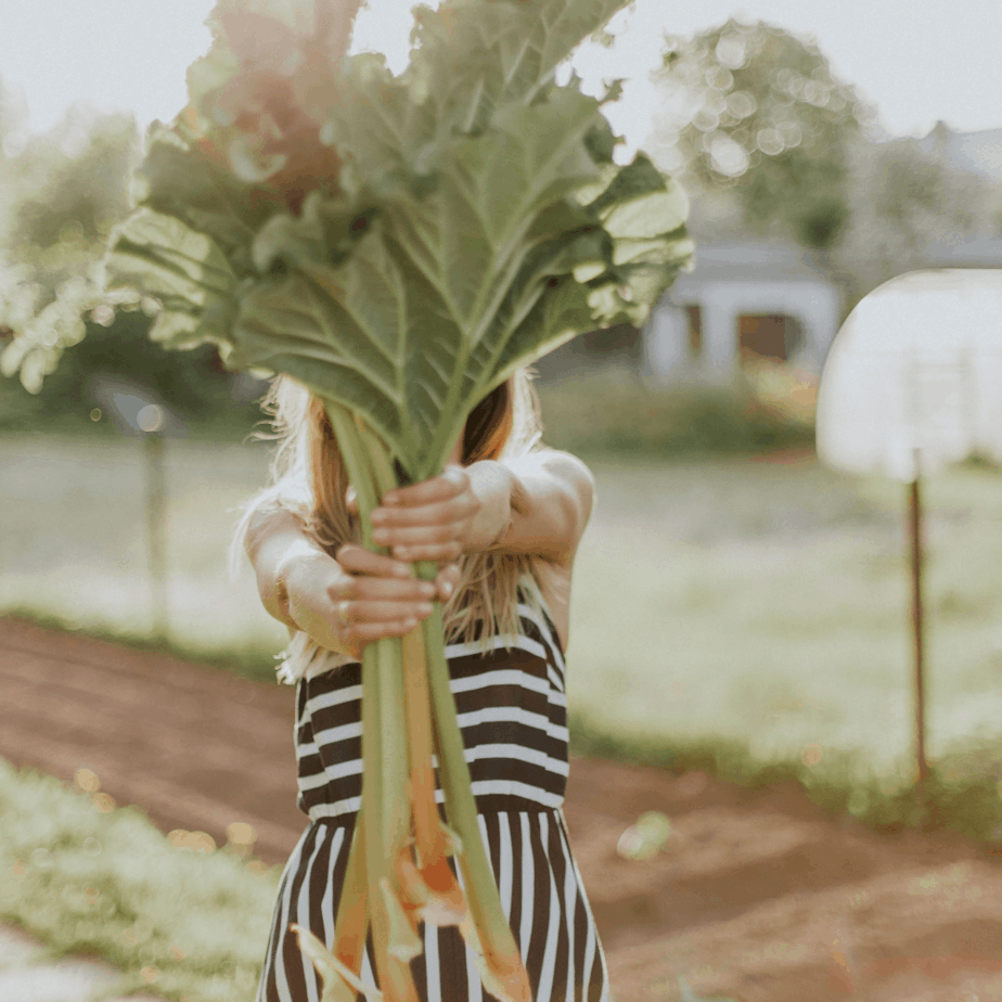 woman holding rhubarb stems